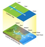 Representing the function and sensitivity of coastal interfaces in Earth System Models
