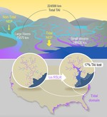 Small streams dominate US tidal reaches and will be disproportionately impacted by sea-level rise